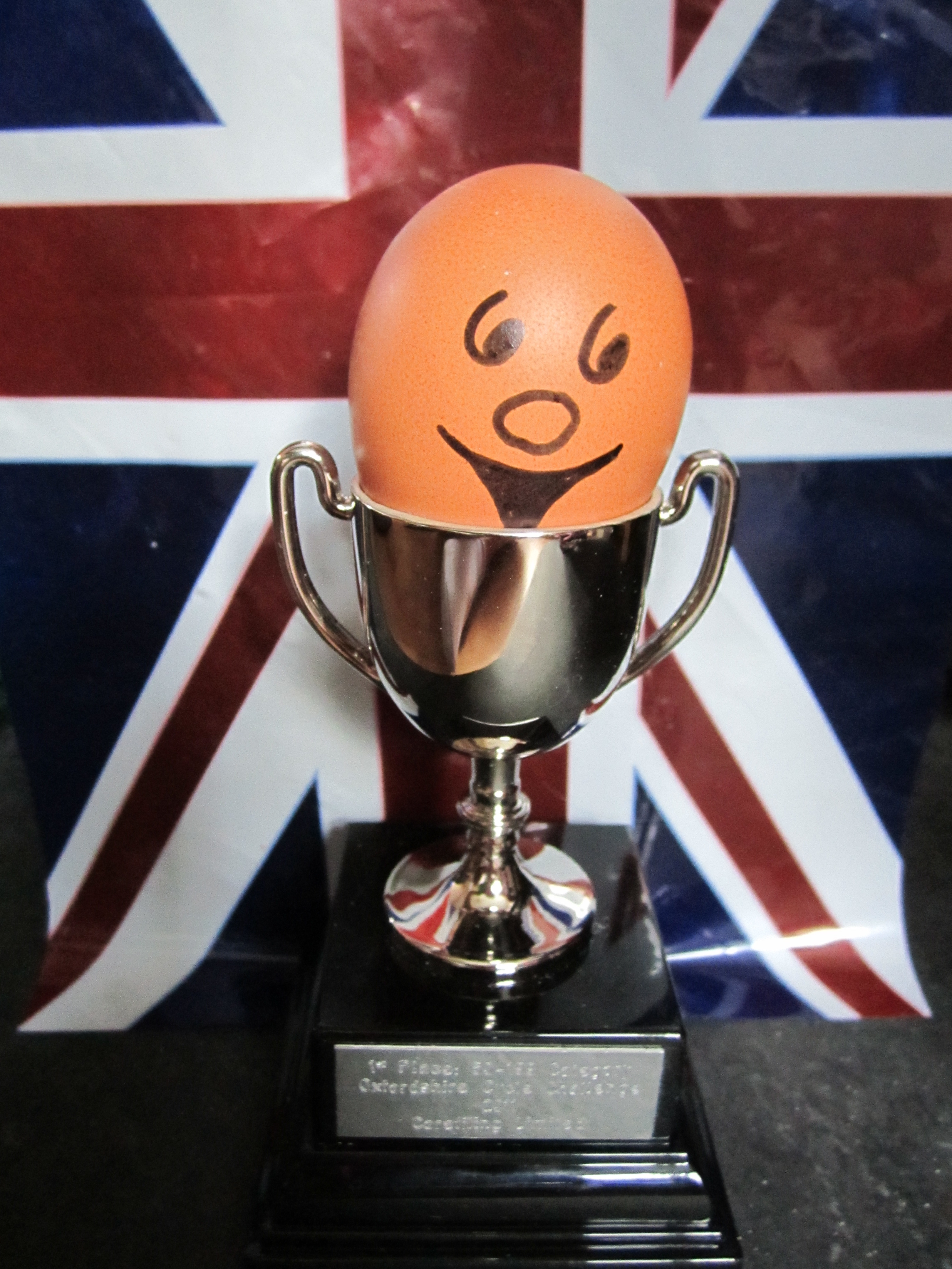 Image result for Egg cup challenge